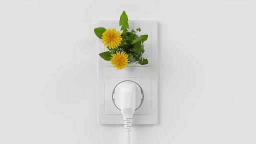 éléctricité verte